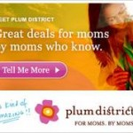 Banner Ad Plum District 1