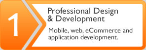 Professional Design and Development